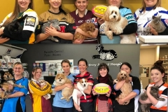 Sydney Animal Hospital